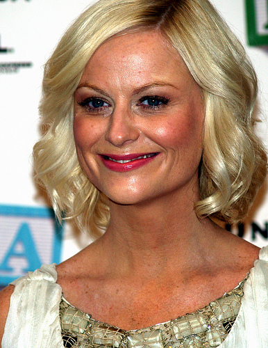3 Career Lessons From Amy Poehler