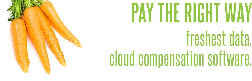 PayScale: Pay the Right Way. Freshest Data. Cloud Compensation Software.