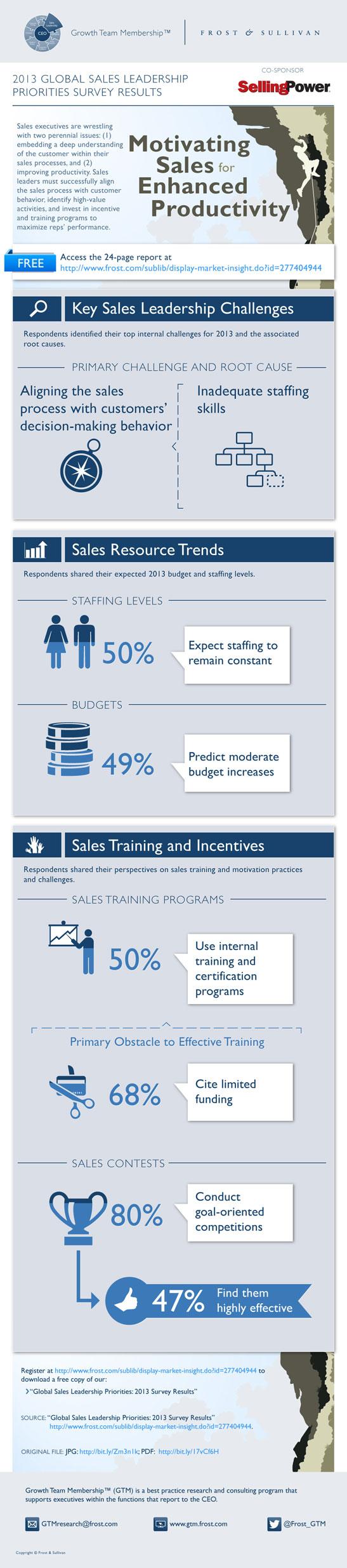 sales productivity infographic